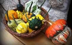 termény ősz tök