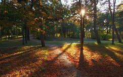 októberi park