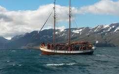 Bálnanéző hajó, Izland Husavik