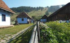 Borospatak, Erdély
