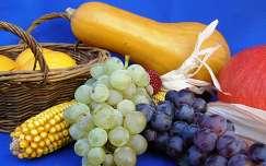 ősz szőlő termény gyümölcs tök kukorica