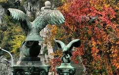 Budapest,Gellért-hegy 2013.10.14. Fotó:Szolnoki Tibor