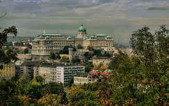 Budapest,Budai várnegyed látképe a Gellért-hegyről 2013.10.14. Fotó:Szolnoki Tibor