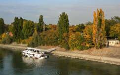Budapest,Margitsziget 2013.10.14. Fotó:Szolnoki Tibor