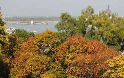 Őszi színek Budapesten a Margit híddal
