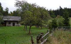 Ház a tisztáson- Hohe Wand