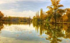 Csónakázó tó Tiszaligeten