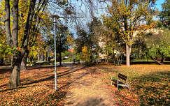 Fotó:Szolnoki Tibor 2013.10.30.