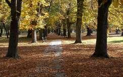 Esterházy kastélypark Pápa