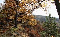őszi Hárs hegy