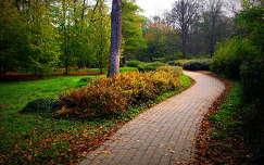 imádom a parkot:-) Köszönöm a Montenvoukonak:-)
