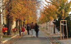 Tóth árpád sétány a Budai várban