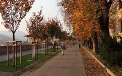 Budai vár, Tóth Árpád sétány