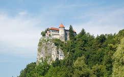 Bledi vár, Szlovénia