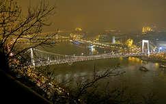 Budapest-2013.12.31.Hidak a ködben,Fotó:Szolnoki Tibor