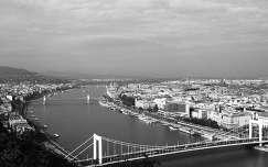 híd erzsébet híd folyó budapest fekete-fehér magyarország duna