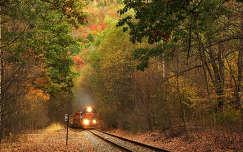 ősz vonat sínpár