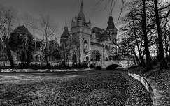 magyarország fekete-fehér vajdahunyad vára budapest várak és kastélyok