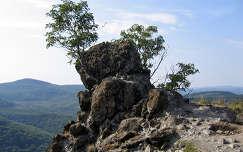Vadálló-kövek, Prédikálószék, Magyarország