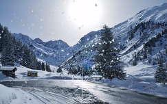 Ausztria, Tyrol