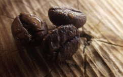 termény vízcsepp kávé