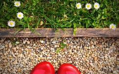 a piros cipő a favorit (ma már a zöld:-)