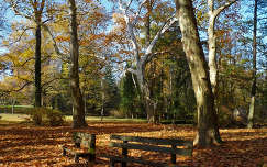 Alcsútdoboz Arborétum