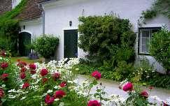 ház nyár pillangóvirág rózsa