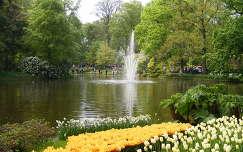 Keukenhof -Hollandia