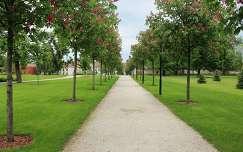 Gödöllői Királyi Kastély - kerti út