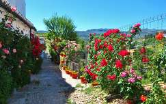 RONDA - SPAIN, THE ROSE GARDEN