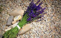 nyári virág vadvirág levendula virágcsokor és dekoráció