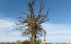 Útszéli feszület hársfa alatt, Mikosszéplak, Vas megye