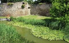 Tatai vár - várárok