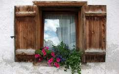 ablak nyár petúnia virágcsokor és dekoráció