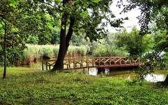 2014.07.13. Tata-Cseke tó, Fotó:Szolnoki Tibor