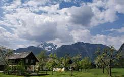Alpok -Ausztria