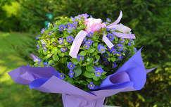 Nyári virág