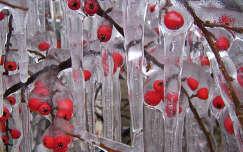 jégbe zárva-tél