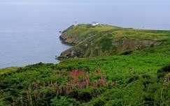 Howth Head, Ireland