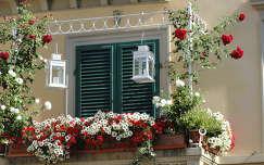 nyár lámpa petúnia rózsa virágcsokor és dekoráció erkély