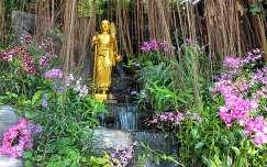 nyár bangkok kertek és parkok orchidea szobor trópusi virág