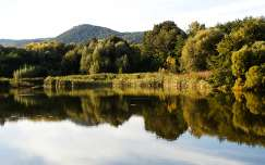 Keszihóci tó tükörképe