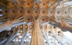 Barcelona - Sagrada Familia 16