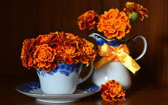 bársonyvirág virágcsokor és dekoráció