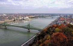 duna szabadság híd budapest folyó híd ősz magyarország