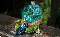 szőlő ősz gyümölcs