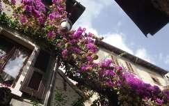 virágok, házak Limone-ban, Garda-tó