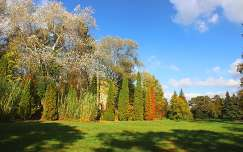 Alcsút - Arborétum