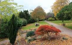 Chester - Grosvenor park